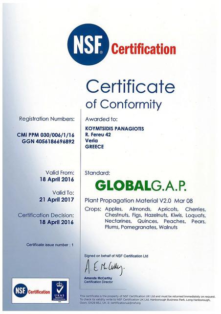 Πιστοποιητικό GLOBAL GAP